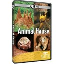 PBS - The.Animal.House.2011.720p